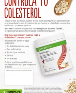 impresionarte-xativa-nutricion-herbalife-flyer-beta-colesterol-betaheart-corazon-volante-publicidad-diptico-papel