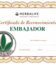 Impresionarte-Distribuidores-Herbalife-Xativa-Asesores-Nutricion-Diploma-Certificado-Reconocimiento-Embajador-Hbl-500-VIP